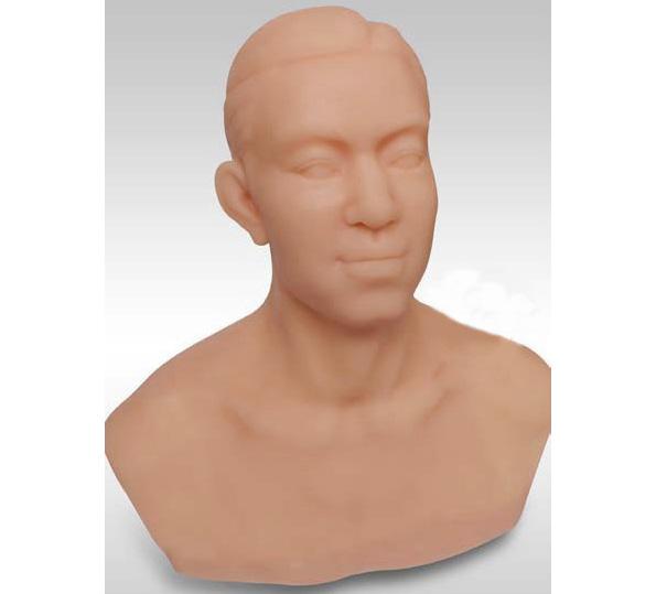 HL/ZJT1 针灸头部训练模型