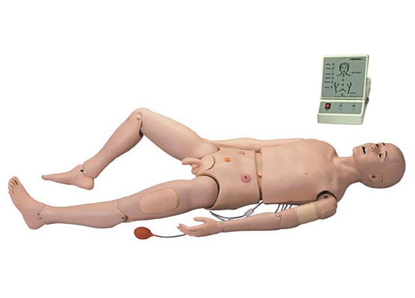HL/3000 高级成人护理及CPR模型
