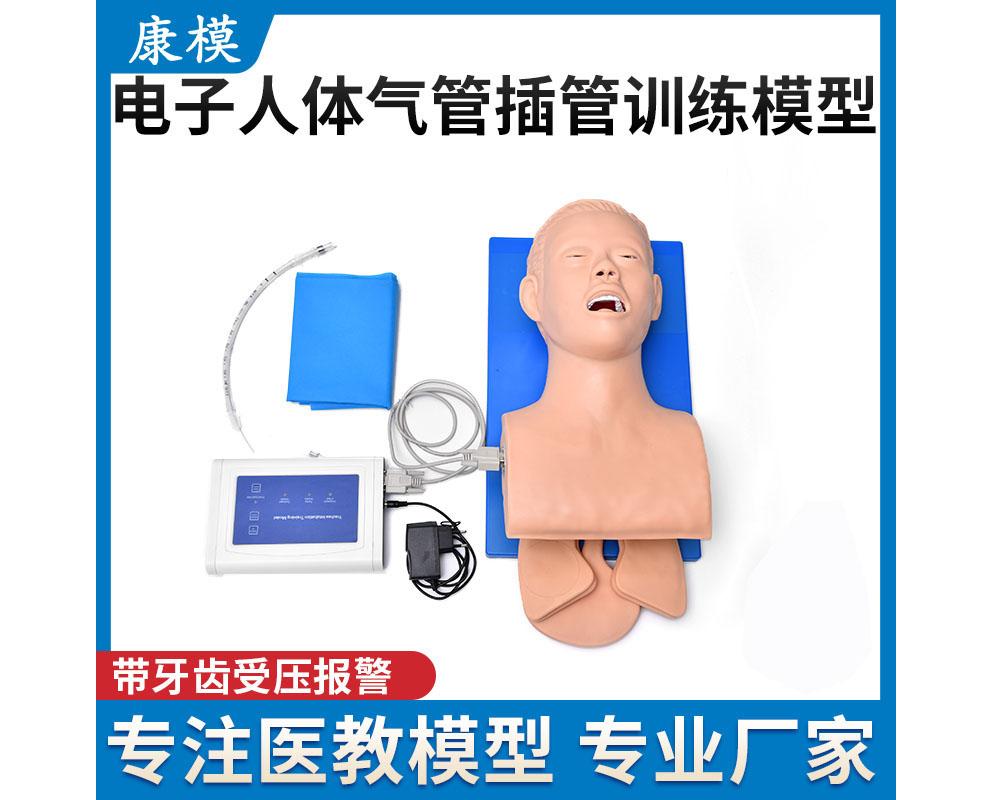 HL/3S 电子人体气管插管训练模型(带牙齿受压报警)