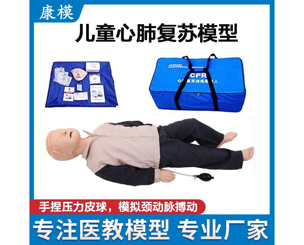 HL/CPR180 儿童心肺复苏模型