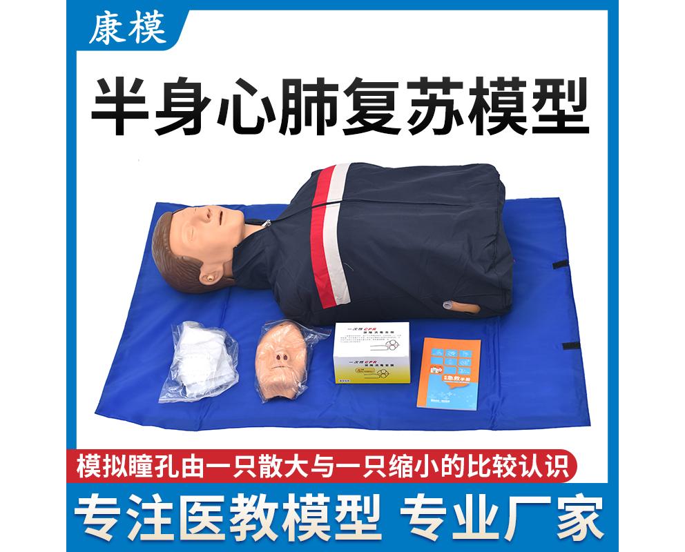 HL/CPR100 半身心肺复苏模型