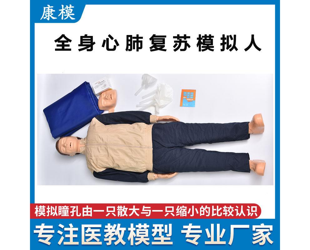 HL/CPR110 简易型全身心肺复苏模拟人